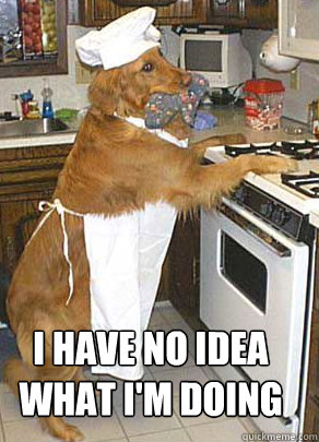 Meme of Golden Retriever Dog Dressed as Chef Not Sure of What He Is Doing | Taste of the Wild