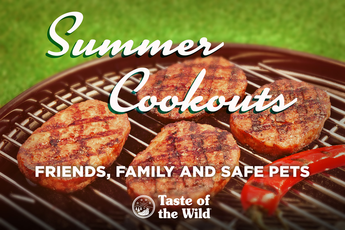 Pet Safety at BBQ Cookouts