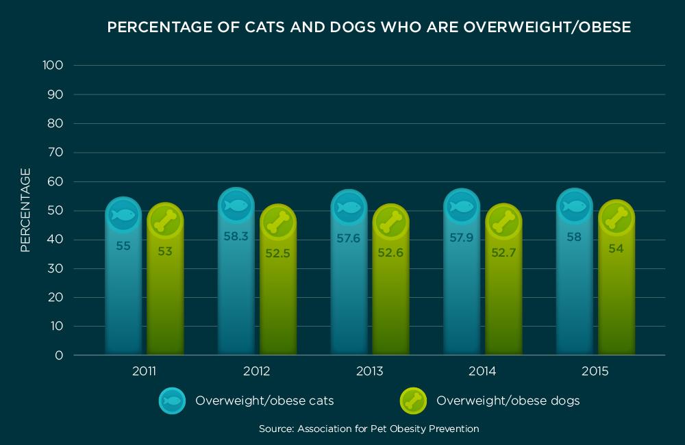 Pet Obesity Chart | Taste of the Wild