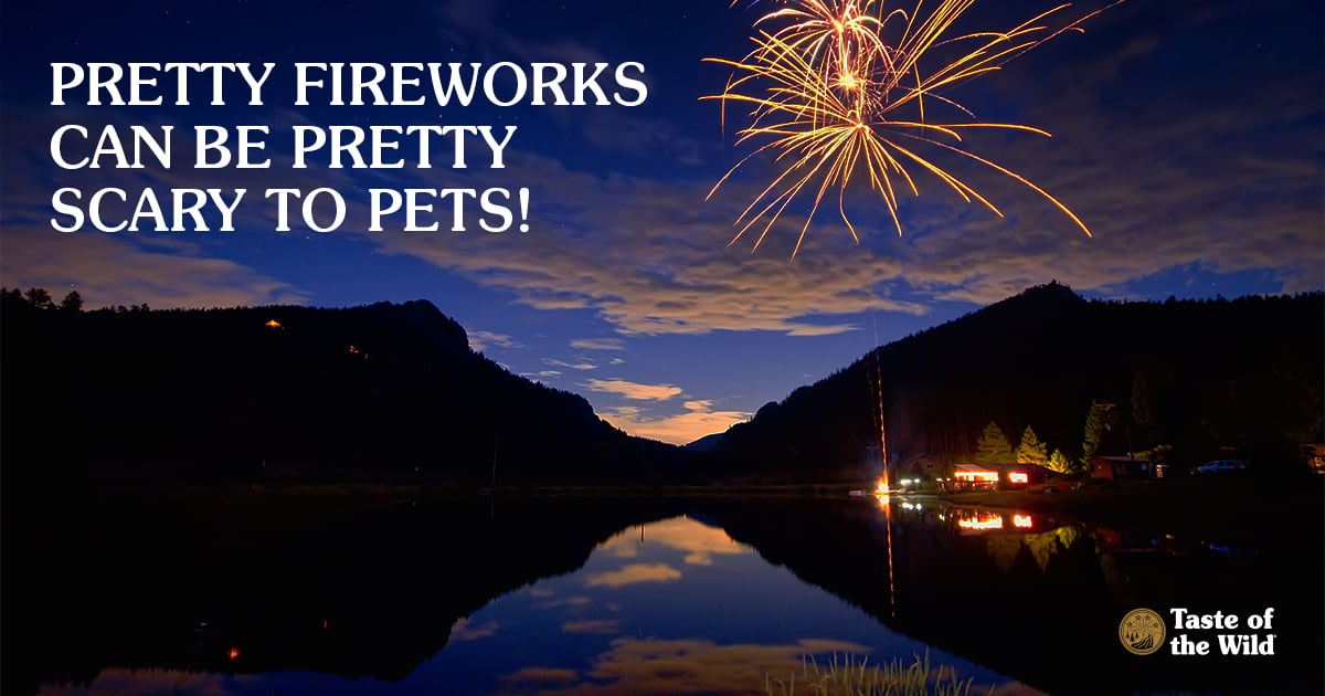 Fireworks over a river and mountains   Taste of the Wild