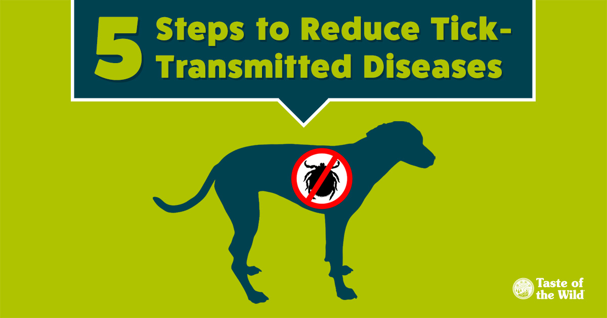 5 Tips to Reduce Tick-Transmitted Diseases | Taste of the Wild