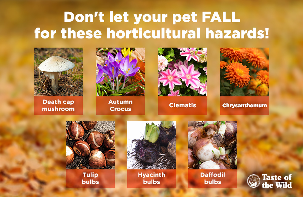 horticultural-hazards_v1_2-2