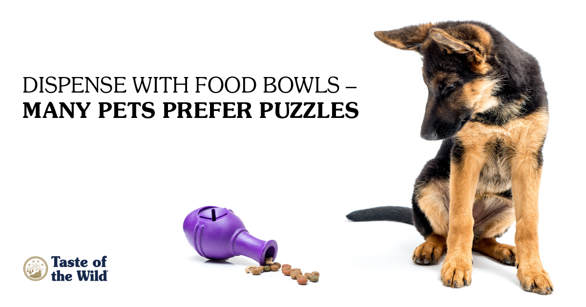 food-puzzles_new1