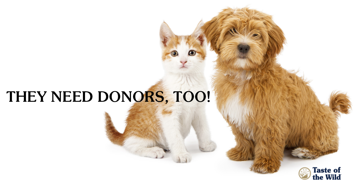 Animal blood donors