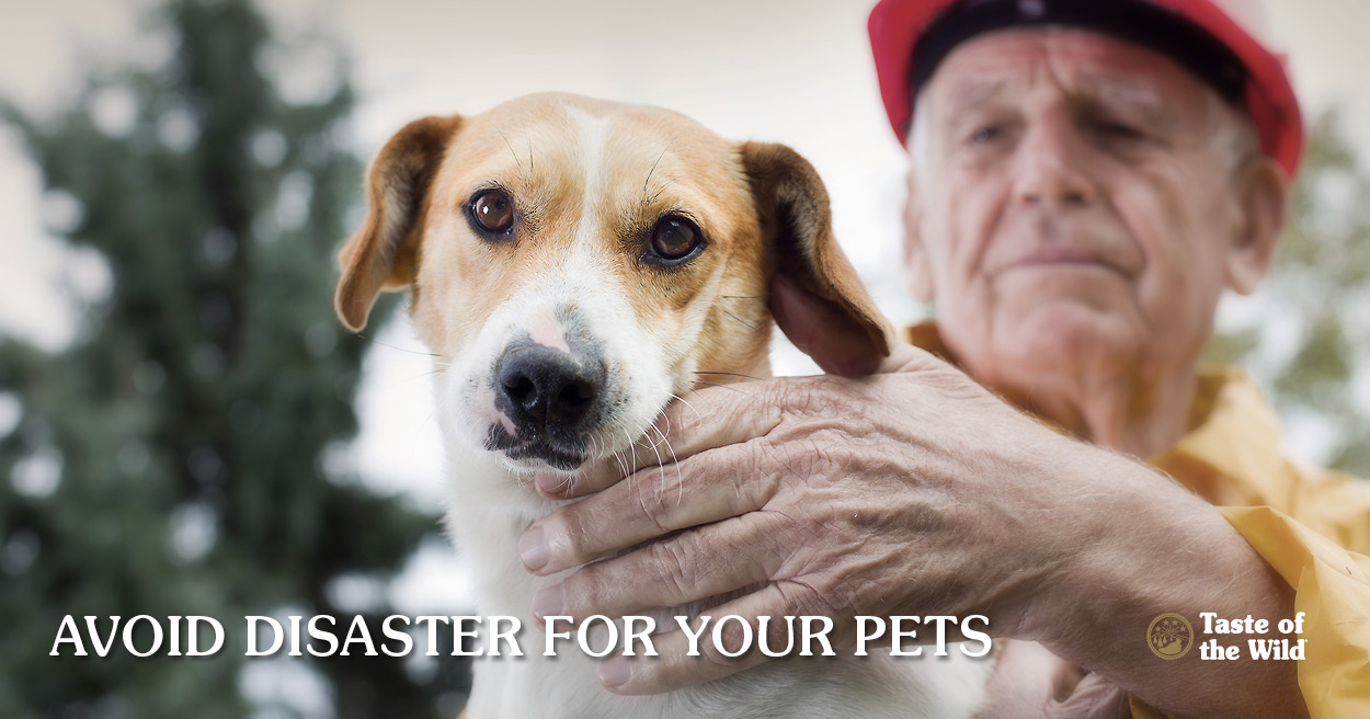 Disaster plan for pets