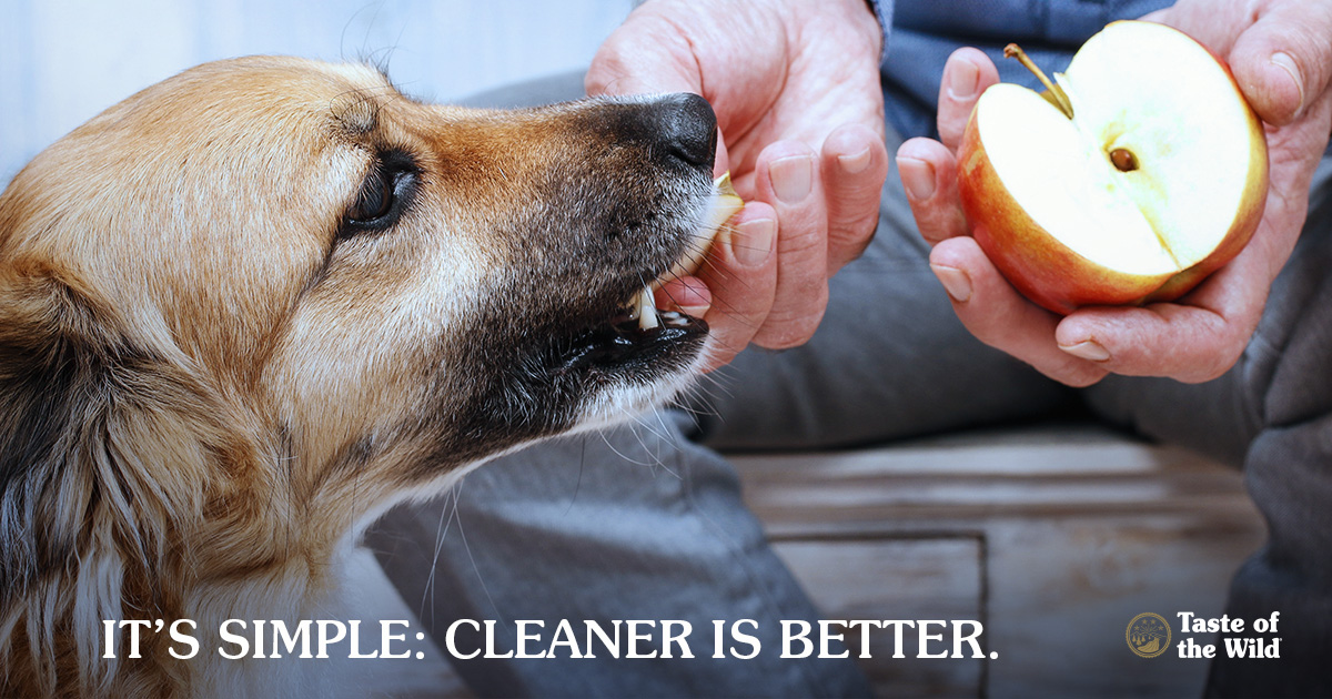 Clean eating for pets