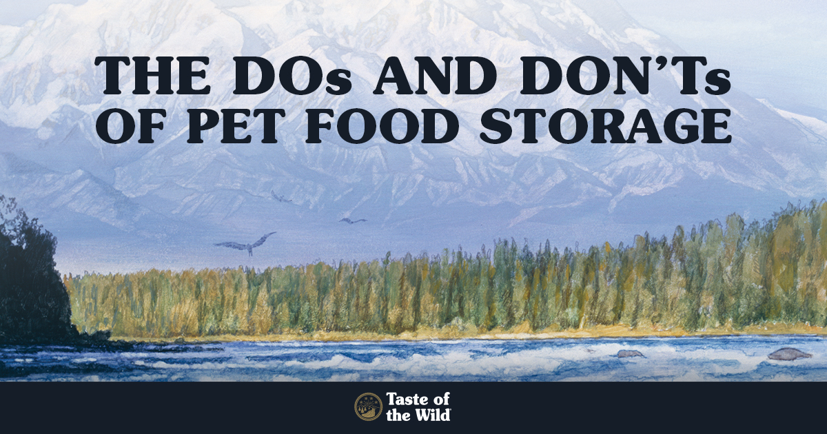 The Dos and Don't of Pet Food Storage