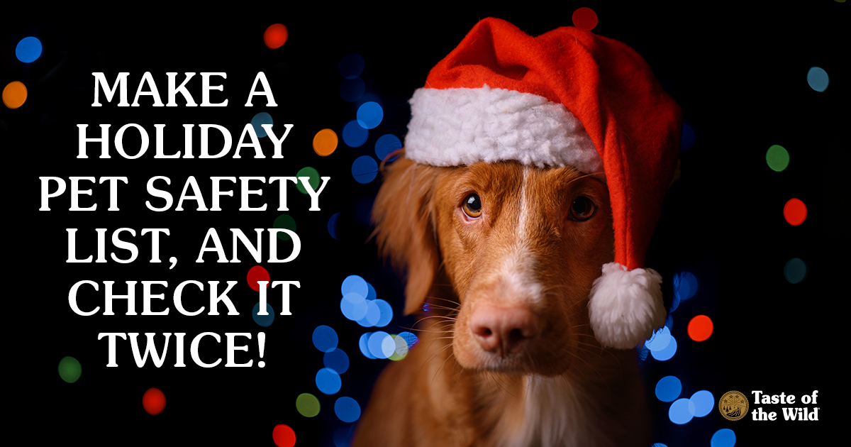 Make a Holiday Pet Safety List, and Check It Twice | Taste of the Wild