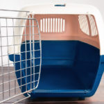 Empty Plastic Dog Crate for Small Dogs   Taste of the Wild Pet Food