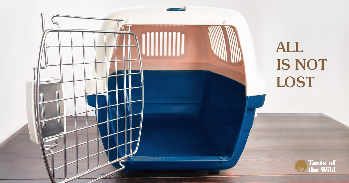 Empty Plastic Dog Crate for Small Dogs | Taste of the Wild Pet Food
