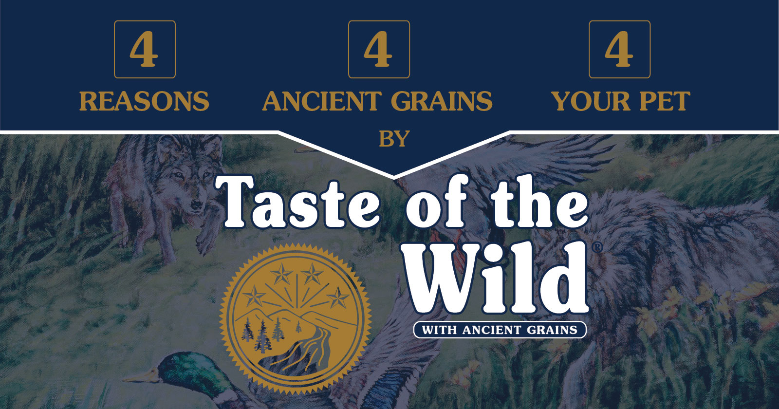 Taste of the Wild with Ancient Grains Benefits | Taste of the Wild