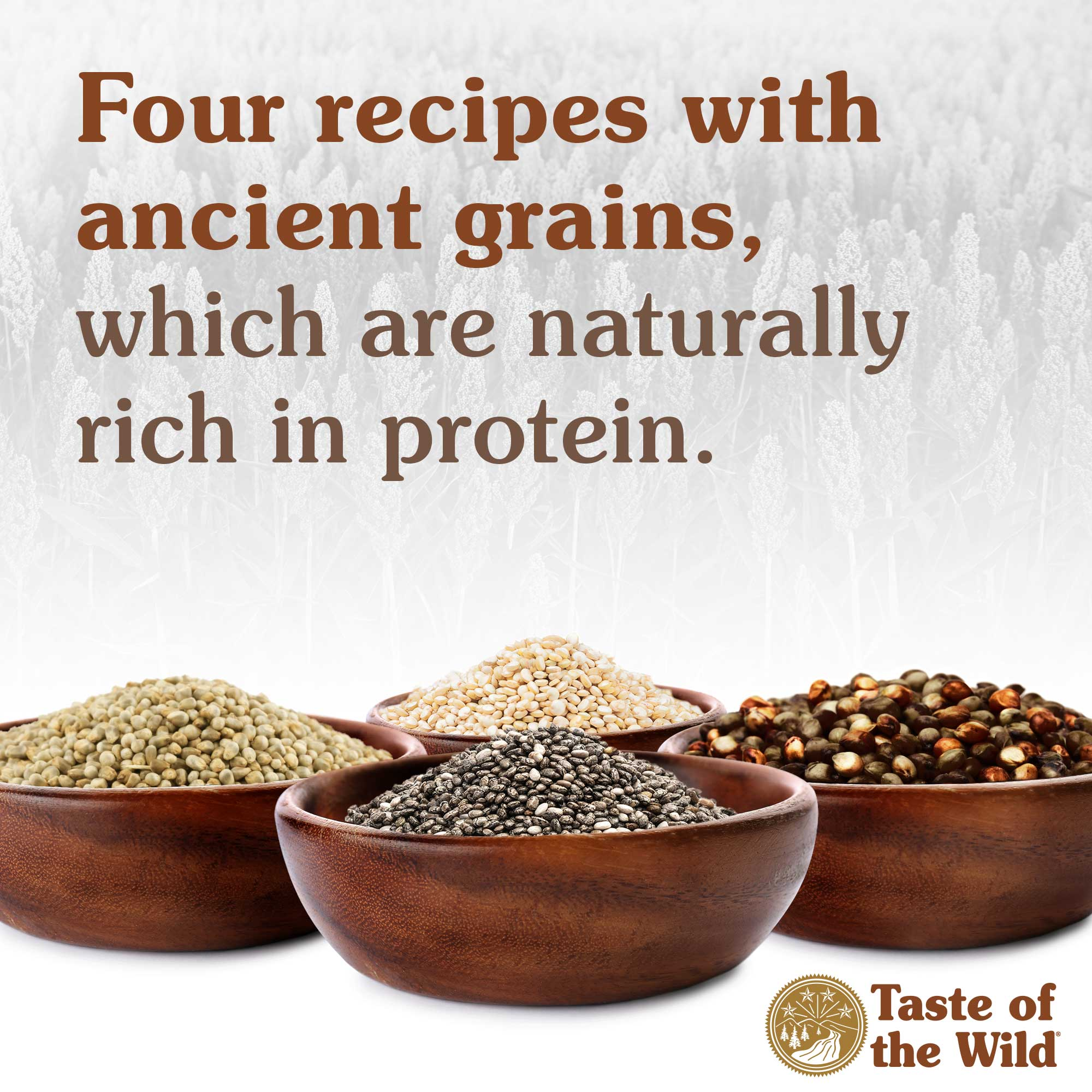 Four recipes with ancient grains, which are naturally rich in protein.