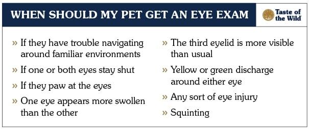 When My Pet Should Get an Eye Exam Checklist | Taste of the Wild
