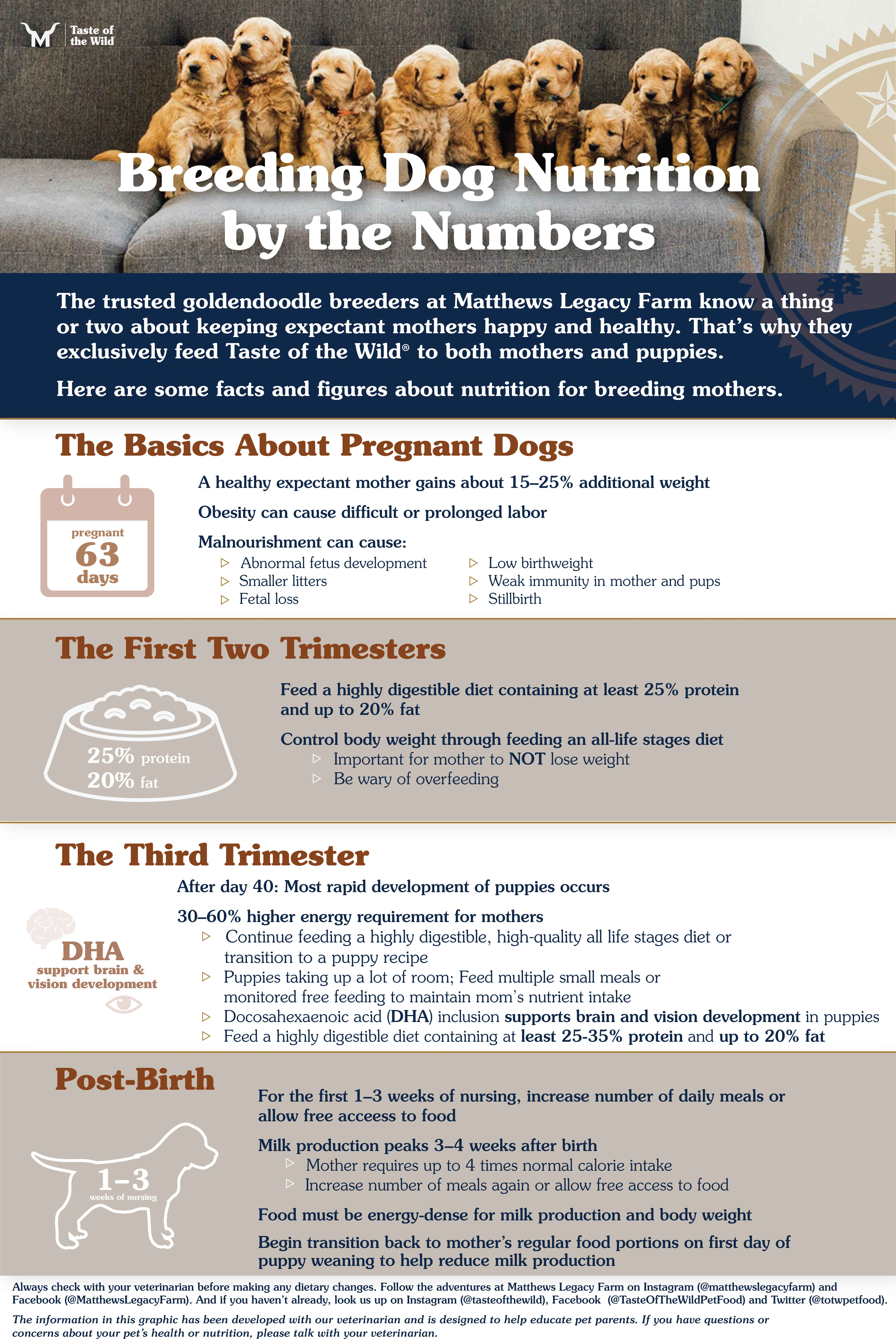 Breeding Dog Nutrition by the Numbers